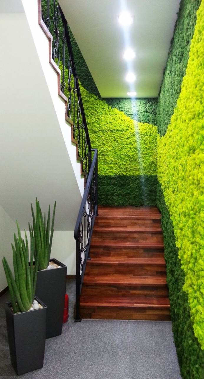 12 Awe Inspiring Moss Wall Ideas Rhythm Of The Home