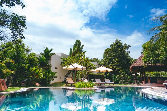 The 13 Best Trees For Pool Areas - Rhythm of the Home