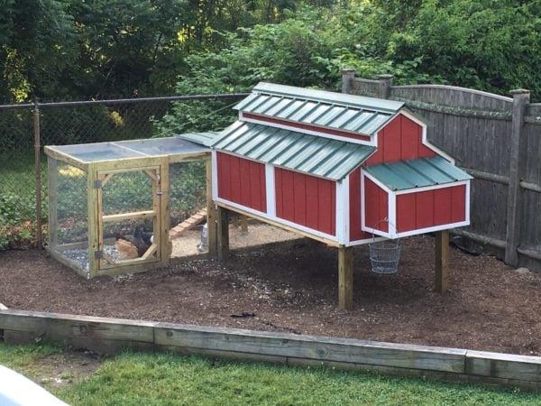 Cheap Easy Diy Chicken Coop